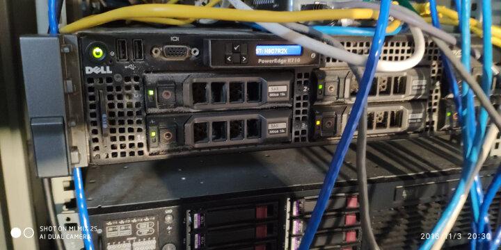 戴尔(DELL)服务器硬盘SAS 146G/300G/450G/600G/900G/1T/2T 可选 300GB 15K SAS 2.5小盘 晒单图