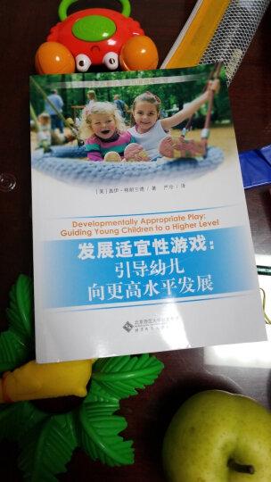 西方儿童学习与发展指南丛书·发展适宜性游戏:引导幼儿向更高水平发展 晒单图