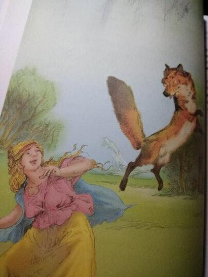 列那狐的故事——打动孩子心灵的世界经典童话 晒单图