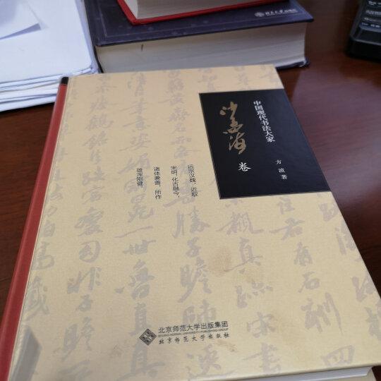 中国现代书法大家:沙孟海卷 晒单图