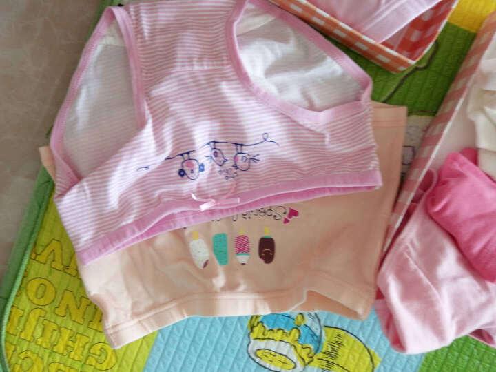 红豆(Hodo)儿童内裤女中大童4条装三角裤A类标准卡通印花青少年三角裤HDK77010 150 晒单图