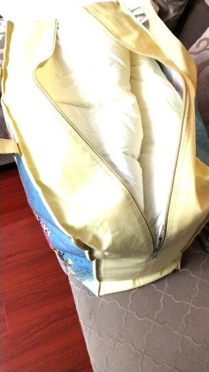 富安娜家纺羽绒冬被子冬被芯 保暖加厚白鹅绒被芯  可拆卸组装分区立体鹅绒被 白色 1.8m(230*229cm) 晒单图