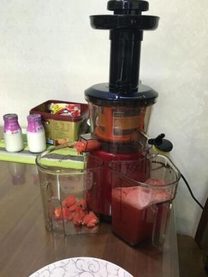 竞怡 大口径榨汁机 家用多功能榨汁机果汁机 低速慢磨原汁机 晒单图