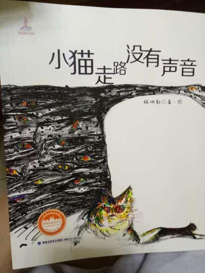 小猫走路没有声音 平装 台湾儿童文学馆 林焕彰童诗绘本 晒单图