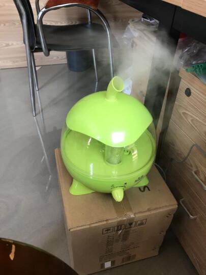 索爱空气加湿器家用大容量湿化器迷你可爱静音雾化器卧室办公室空调香薰精油卡通增湿器孕妇婴儿 绿色 晒单图