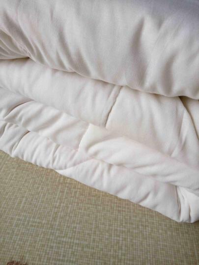 云灿被子棉被 新疆棉花被  棉絮垫被褥子被芯 单双人适用 180*220单人加大 5斤秋冬推荐 晒单图
