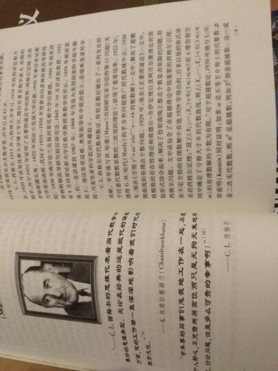 当代数学大师:沃尔夫数学奖得主及其建树与见解(第4版) 晒单图