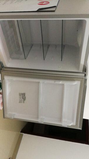 康佳(KONKA)184升 双门冰箱 小型电冰箱 家用节能 金属面板 保鲜静音 BCD-184GY2S 晒单图