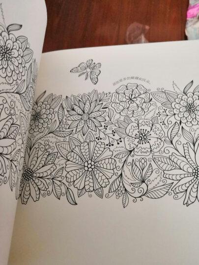 4色圆珠笔画出可爱插画 晒单图