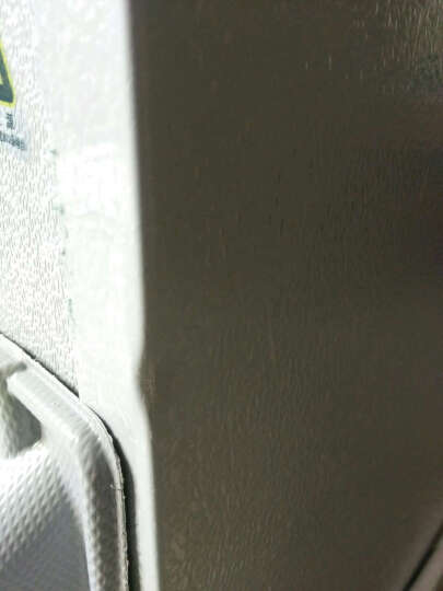 金帅(jinshuai) BCD-65 实标65升 双门迷你小冰箱 家用冷藏冰箱 银灰色(BCD-65) 晒单图
