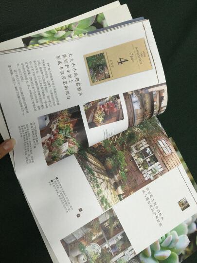 """多肉联萌:多肉萌物志+多肉植物新""""组""""张+多肉植物玩赏手册(套装全3册) 晒单图"""