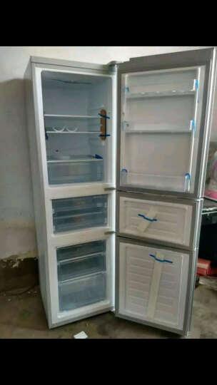 帝度(DIQUA)BCD-219TZ 219升 三门冰箱 中门变温软冷冻 节能保鲜(亮光银) 晒单图