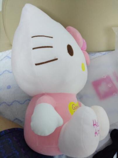 Hello Kitty凯蒂猫 KT毛绒玩具公仔玩偶 生日情人节女生礼物布娃娃 9