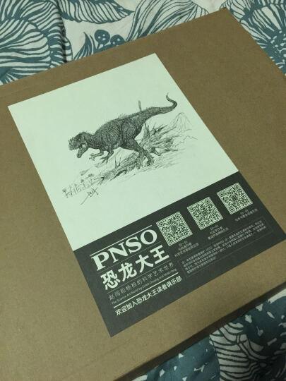 《它们:恐龙时代》超大开本科学艺术画册 晒单图