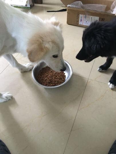 【E宠】雷米高澳宝经典宠物成犬狗粮 泰迪金毛天然粮 10kg 晒单图