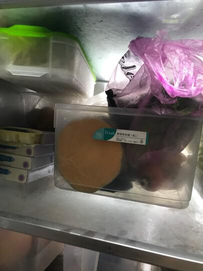 HAIXIN 冰箱收纳保鲜盒 塑料长方形微波食品面条鱼储物盒 蓝色 1层+1盖 晒单图