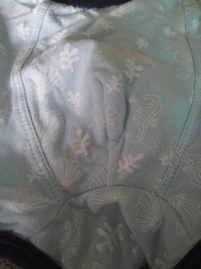 红豆(Hodo)男童内裤中大童A类标准三条平角盒装小孩卡通印花四角裤HDK779 120 晒单图
