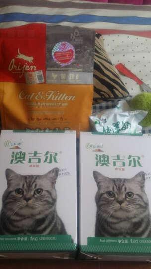 澳吉尔 猫粮 天然粮 猫食 成年猫 主粮 贵族英短暹罗加菲猫宠物猫粮 1kg 晒单图