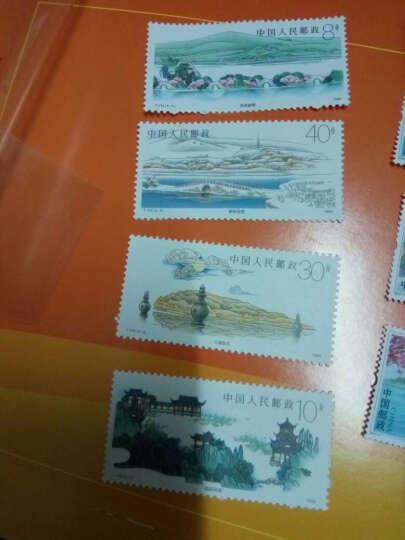 T144 杭州西湖邮票 晒单图