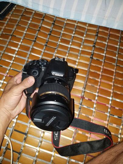 腾龙(Tamron)B005 SP AF17-50mm F/2.8 XR DiII VC LD (IF)半画幅标准变焦防抖挂机镜头(佳能单反卡口) 晒单图