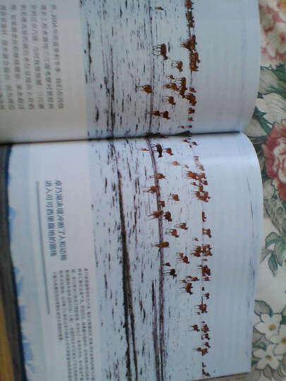 中国国家地理(2016年1月号《甘肃专辑》上) 晒单图