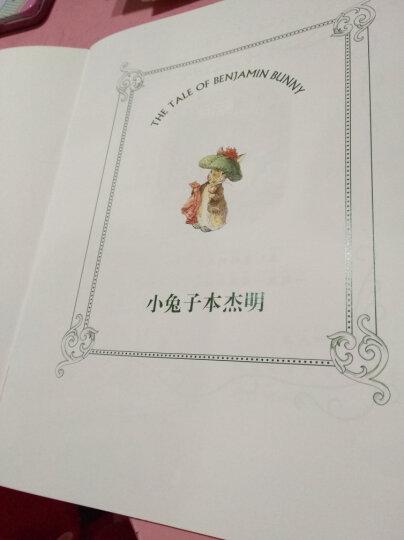 顶级大师绘本·彼得兔全集(注音版 套装全10册) 晒单图