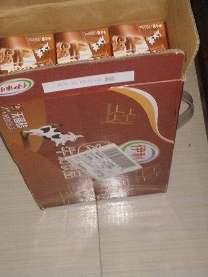 伊利 巧克力味牛奶饮品250mL*24盒 晒单图