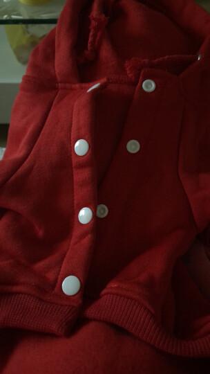 泰迪狗狗衣服秋冬装中小型犬卫衣贵宾金毛柯基博美宠物冬季服装加厚保暖 英伦学院 红色 XL 晒单图