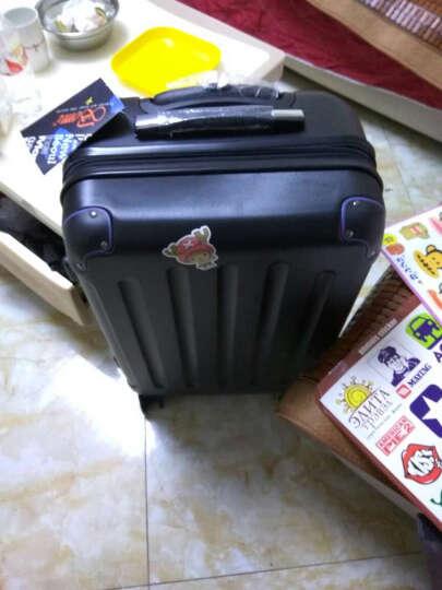 波米拉杆箱万向轮旅行箱男女行李箱24英寸26英寸28英寸登机密码箱20英寸 磨砂白色带扩展 20英寸 晒单图