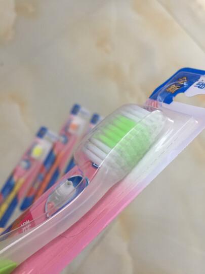 三笑 清新倍护 牙刷 单支装 细毛软毛 单支装(颜色随机) 晒单图