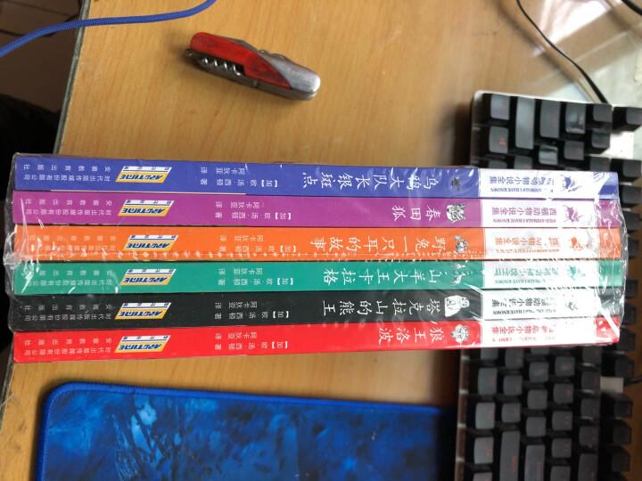 西顿动物小说全集(套装共6册) 晒单图