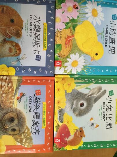 找朋友系列神奇立体书(套装全4册 中英双语) 晒单图