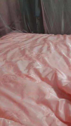 哈比家纺家居床品套件 全棉斜纹活性印花高品质床上用品四件套 皇冠假日 1.5米床笠款四件套(被套2.0x2.3m) 晒单图