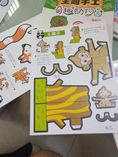 【送场景海报】正版现货 我的创意手工书 儿童立体主题手工全4册 幼少儿童全脑开发益智免裁剪kc 晒单图