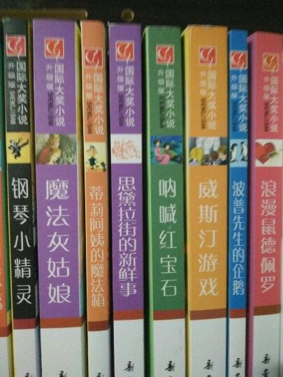 国际大奖小说(升级版)——菲斯的秘密 晒单图