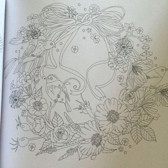 少女X花之绘 梦想家的填色书 晒单图