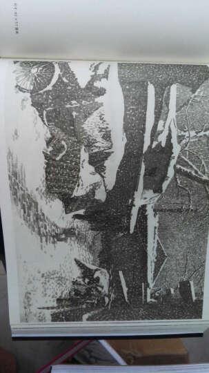 消失的胡同:铅笔画中的北京风貌 晒单图