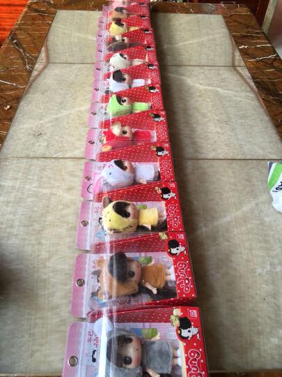 【两件8折】韩国 冬己 迷糊娃娃 DDUNG 十二生肖 女孩玩具 迷你公主 仿真洋娃娃 12个生肖冬己全套 晒单图