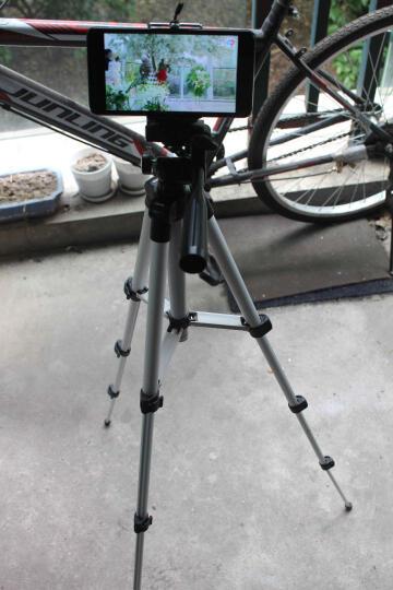 手机自拍三脚架 便携直播投影仪懒人支架创意多功能拍照神器DV摄相机录像视频通用落地三角架 新款自拍三脚架+手机夹子 晒单图