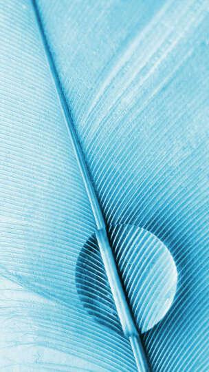 信鼎丰中号翼型落地折叠晾晒架室内外毛巾架儿童尿布架DF-01-04 晒单图