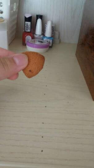法丽兹丰熙微曲奇饼干100g新品零食儿童小吃早餐饼干休闲食品蛋糕茶点 拿铁咖啡味100g 晒单图