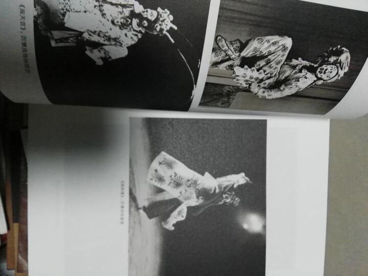 中国京昆艺术家传记丛书·天海逍遥游:厉慧良传 晒单图