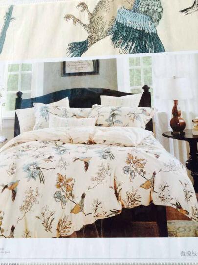 瑞卡丝 全棉四件套卡通田园印花床上用品床单被套枕套学生宿舍床品套件 早安斑比 适用1.5/1.8m床四件套 晒单图