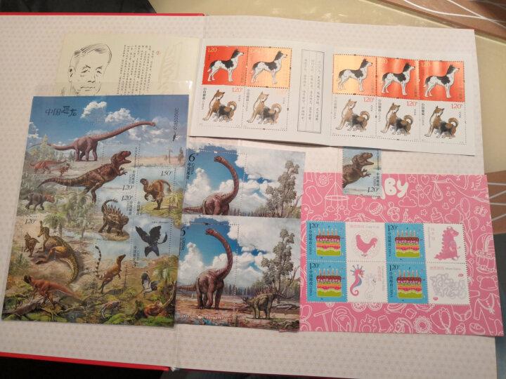 邮票可寄信 东吴收藏 寄信/贴信/寄明信片 邮票 编年系列之三 中国恐龙 6-2 永川龙 晒单图