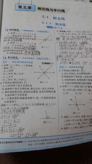 走向中考考场 七年级数学下 人教版 2016春 晒单图