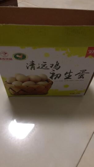 天农 清远鸡初生蛋 农家放养新鲜土鸡蛋 只发当天蛋 24枚/30枚 晒单图