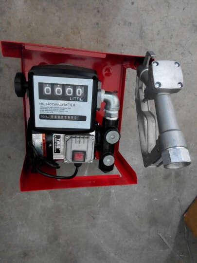 力尚龙大流量车载加油机 稳定计量柴油加油机 加油泵 液体灌装机220V12V24V高速抽油 220V高速计量加油机配普通油枪 晒单图