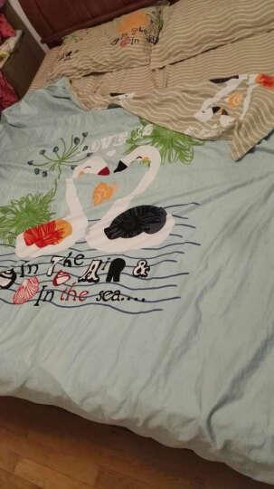 萱之悦 全棉四件套大版花优质棉 套件卡通家纺床上用品 全棉大版花-天鹅湖 1.8米床(适合200*230的被子) 晒单图