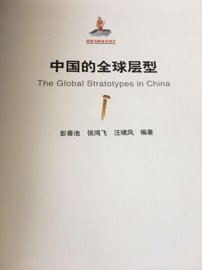 中国的全球层型 晒单图