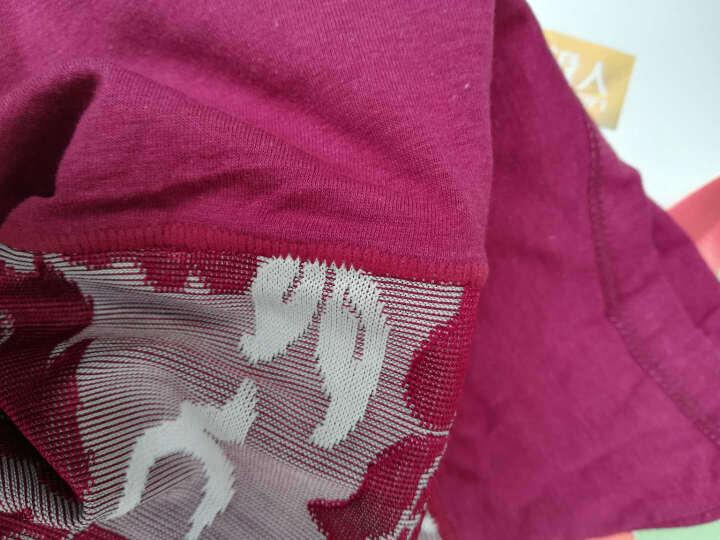 南极人女士内裤纯棉档高腰收腹内裤女大码中老年内裤女式产后内裤 高腰款B组(肤色+天蓝+粉色+酒红) XXL建议适合2尺3-2尺5的腰围穿) 晒单图